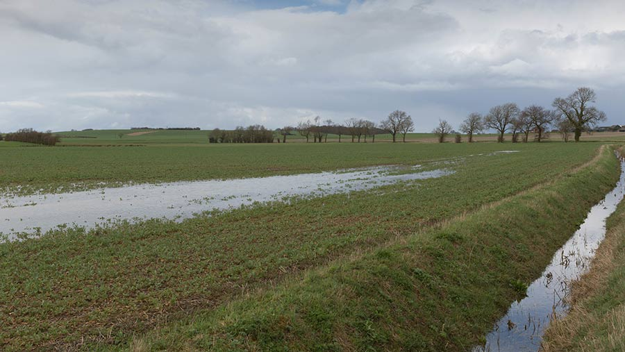 Farm leaders appeal for relaxation of three-crop rule